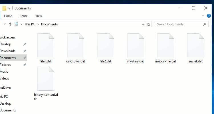 Open DAT File
