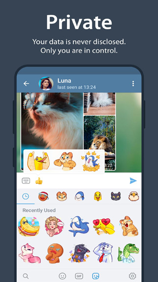 Telegram Messenger3